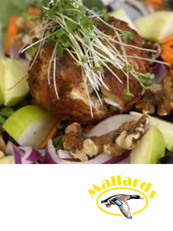 pp11 eat mallards